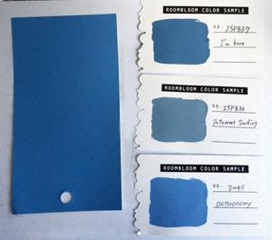 ブレアの部屋の青はどれ?昼白色